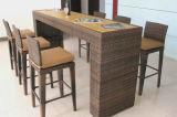 Tabella Furniture-124 esterno della barra del rattan della presidenza della barra di svago