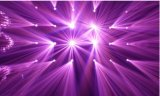 Indicatore luminoso capo mobile della lavata LED del fascio di punto dell'abito 280W di alto potere