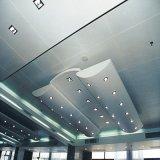 3D Decoratieve Comité van de Gordijngevel van het Aluminium