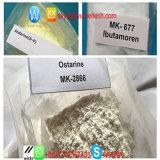 Sarms Cardarine/Ostarine/Mk-677 /Andarine/Lgd-4033/Sr9009/Rad 140/Mk-677