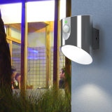 Lumière solaire extérieure de détecteur du mur DEL de jardin de RoHS de la CE