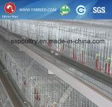Автоматическая клетка цыпленка для продукции бройлера