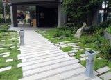 최신 인기 상품 LED 태양 통로 빛 정원 램프 중국제