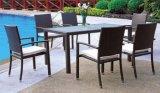 Presidenza esterna e Tabella della mobilia del patio del giardino impostate (LN-071)