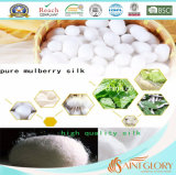 Comforter stabilito della trapunta della Cina di gelso dell'assestamento puro su ordinazione della seta