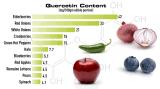 Estratto di Japonica del Sophora della quercetina di 95% per il supplemento dell'alimento