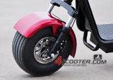 Горячий продавая самокат кокосов города Harley электрический с двойными передними & задними подвесами удара