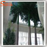 Het modelleren van de Grote Kunstmatige Kokospalm van de Boom voor Decoratie