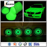 Glow in The Dark Powder Pigment pour peinture automobile