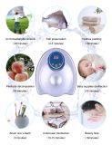 Hauptgebrauch-Wasser-Sterilisator-Ozon-Wasser-Reinigungsapparat für Obst und Gemüse