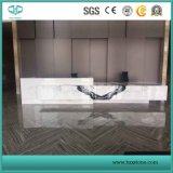 Brame de marbre blanche de panda appariée par livre pour le marbre de partie supérieure du comptoir, blanc et noir pour le plancher et le mur