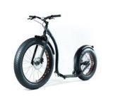 """O """"trotinette"""" elétrico do retrocesso do pneumático gordo novo do projeto 2017 E-Retrocede a motocicleta da bicicleta do balanço do """"trotinette"""" E"""