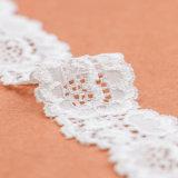 I migliori tessuti di vendita del merletto all'ingrosso immagazzinano per gli indumenti