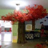 정원 인공적인 빨강 단풍나무