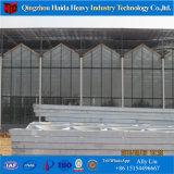 Tipo invernadero comercial de Venlo de la fuente del chino del hidrocultivo