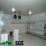 Sitio de almacenaje médico del refrigerador