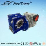 motor síncrono trifásico del imán permanente 3kw con el gobernador de velocidad y el desacelerador (YFM-100/GD)
