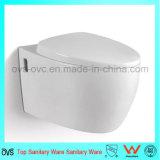 O fabricante de China Parede-Pendurou o fabricante dos encaixes do banheiro do toalete