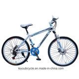 성인 (LY-A-57)를 위한 싼 탄소 산악 자전거