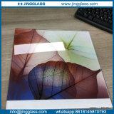 Placas de vidro cerâmicas coloridas de folha lisa da frita de Digitas para o vidro da porta do indicador
