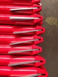 빨간 그려진 표면 완료를 가진 Ringlock 비계