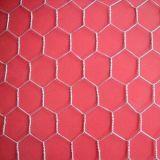 Malha de Arame hexagonal/Malha de frango (RS-4011)