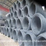 주요한 질 중국은 못을 만들기를 위한 준비되어 있는 재고 고강도 SAE 1006/1008/1010 8/10mm Ms 철강선을 맷돌로 간다