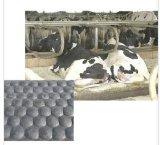 Pepple tapis caoutchouc