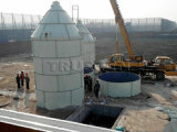 150t Cement Storage Silo for Concrete Batching Seedling
