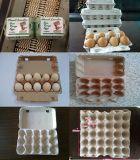 Máquina bandeja de huevos de papel reciclado
