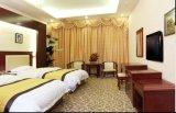 Het Meubilair van de Slaapkamer van het hotel/Meubilair van de Slaapkamer van de Luxe het Dubbele/de StandaardReeks van de Slaapkamer van het Hotel Dubbele/het Dubbele Meubilair van de Logeerkamer van de Gastvrijheid (chn-010)