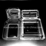Kunststoffgehäuse-Behälter und Kasten