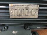 Мотор AC с тормозом воздуха в японии