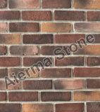 Usine de briques de béton en provenance de Chine (ABD-05)