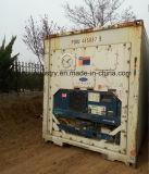 40FT de Container van de Adelborst van de tweede Hand voor Verkoop (goedkope prijs)