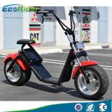 De Elektrische Autoped Citycoco Ebike van het Elektrische voertuig van de Afstandsbediening van Ecorider 2017 60V voor Volwassene