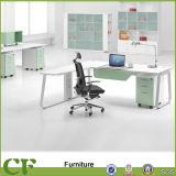 Revestimiento en polvo moderna oficina escritorio ejecutivo tabla