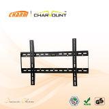 Qualität örtlich festgelegte Fernsehapparat-Wand-Halter (CT-PLB-221)