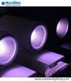 30W luz de pista de LED de color especial para la iluminación de pescado