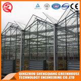 Estufa de vidro comercial do jardim do aço inoxidável da agricultura