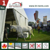 Disegno modulare mobile della tenda foranea di Alumium per la scuderia del cavallo dal fornitore principale della tenda