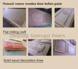Peint porte en bois composite sandwich (JO-003)