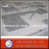 Tapa gris prefabricada de piedra natural de la vanidad de la encimera del granito (DES-C09)