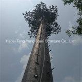熱い販売法GSMの電気通信のカムフラージュのMonopole木タワー