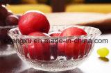 Ciotola di vetro Sx-016 di a microonde dell'insalata del gelato dell'acido borico di 100%