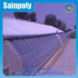 Serra solare di alta qualità all'ingrosso per Vegetabale