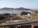 Home Rooftop를 위한 작은 Wind Generator 3000W