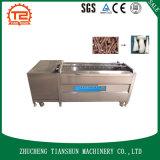 Machine de développement de lavage d'écaillement du prix usine 304ss Casava