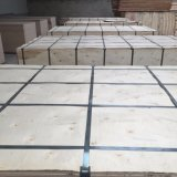 Bois de construction en bois de faisceau de Combi de contre-plaqué d'eucalyptus de pente de Cc/Cc