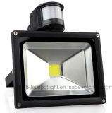 Preto Cinza 10W 20W 30W 50W 70W 100W LED Flood Light (COB LED)